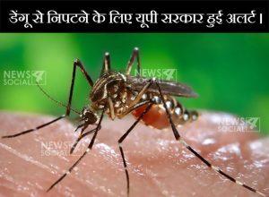 डेंगू से निपटने के लिए यूपी सरकार हुई अलर्ट