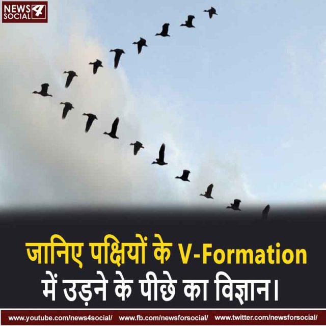 जानिए पक्षियों के V-Formation में उड़ने के पीछे का विज्ञान।